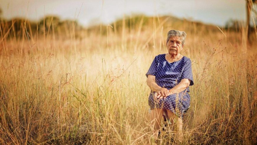 Phytoestrogens – good, bad or evil?